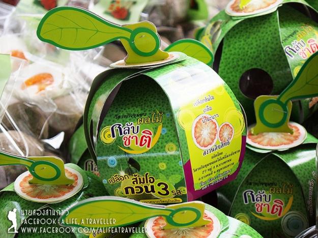 013 Songkram TAT