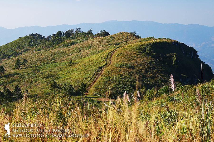 Chiang Rai 018