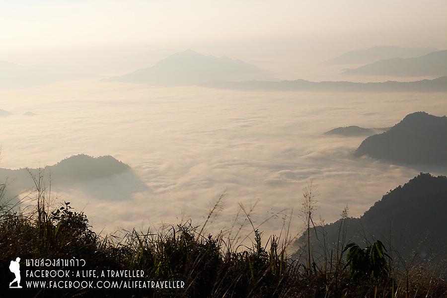 Chiang Rai 029