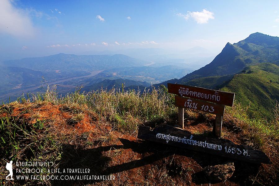 Chiang Rai 043