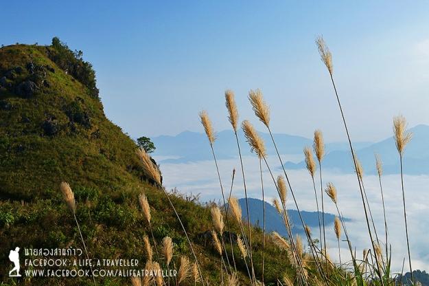 Chiang Rai 057