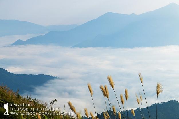 Chiang Rai 058