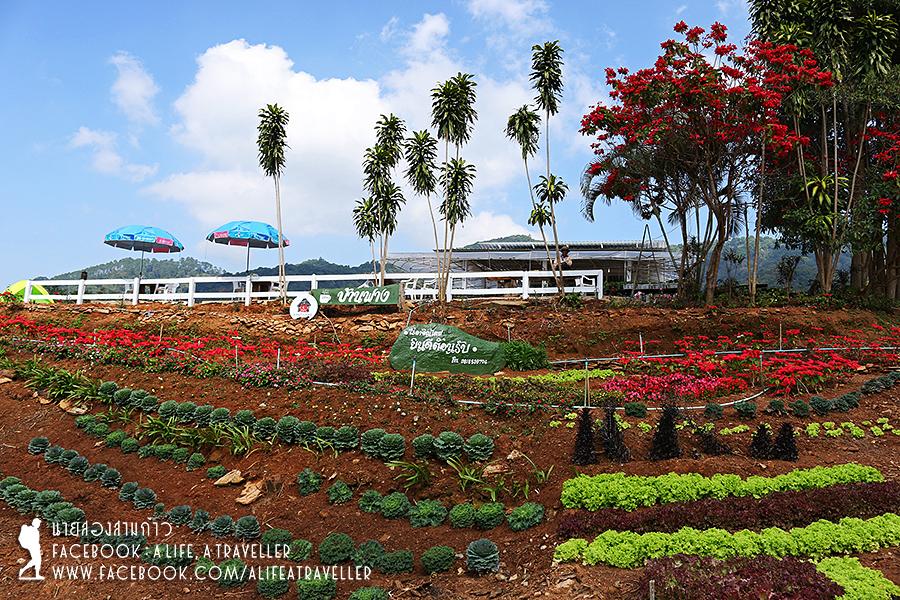 Chiang Rai 060