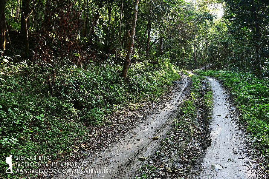 Chiang Rai 067